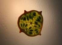 Makro-Fotografie von Obst  Hier mit Sternfrucht, Limette und Himbeere.  Technik: In Scheiben geschnitten, auf milchige Plexiglasscheibe aufgeklebte und von hinten beleuchtet.
